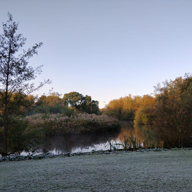 Første nattefrost